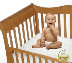 Snoozy Organic Cotton Waterproof Crib Mattress Pad by Priva