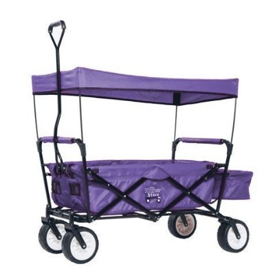 The Wagon Store-Folding Wagon
