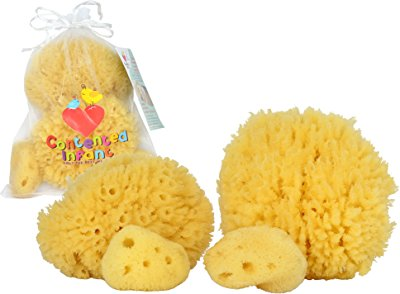 Natural Sea Sponges for Newborn by Contented Infant