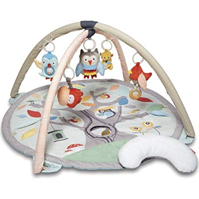 Skip Hop Baby Activity Gym Playmat