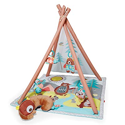 Skip Hop Baby Infant Toddler Activity Gym