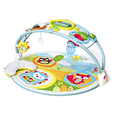 Skip Hop Explore Baby Activity Gym