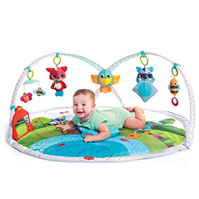 Tiny Love Dynamic Gymini Activity Play Mat